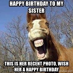 Horse - Happy Birthday To my sister This is her recent photo, wish her a happy birthday
