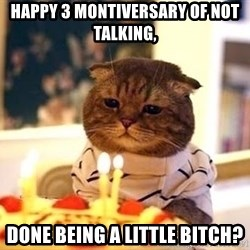 Birthday Cat - Happy 3 Montiversary of not talking, Done being a little bitch?