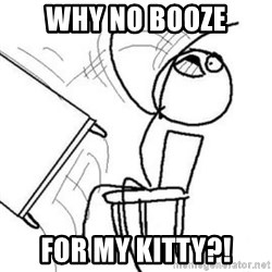 Flip table meme - Why no booze For my kitty?!