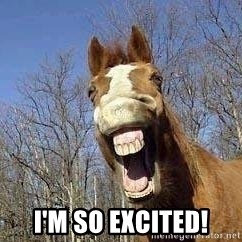 Horse -  I'm so excited!