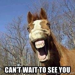 Horse -  Can't wait to see you