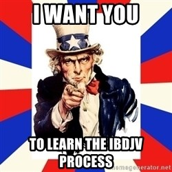 uncle sam i want you - i want you to learn the ibdjv process