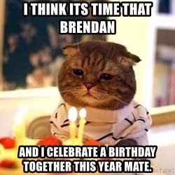 Birthday Cat - I think its time that brendan  And i celebrate a birthday together this year mate.