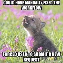 Baby Insanity Wolf - could have manually fixed the workflow forced user to submit a new request
