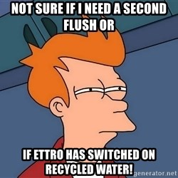 Futurama Fry - Not sure if i need a second flush or If ettro has switched on Recycled water!