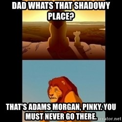 Lion King Shadowy Place - dAD WHATS THAT SHADOWY PLACE? tHAT'S ADAMS MORGAN, PINKY. YOU MUST NEVER GO THERE.