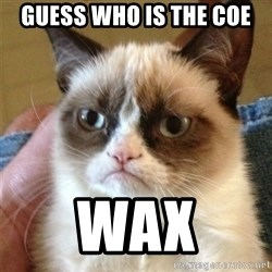 Grumpy Cat  - guess who is the coe wax