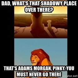 Lion King Shadowy Place - Dad, What's that shadowy place over there? That's adams morgan, pinky. you must never go there