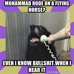 Yes, this is dog! - mohammad rode on a flying horse? even I know bullshit when i hear it