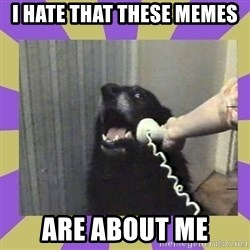 Yes, this is dog! - I hate that these Memes Are about me