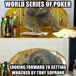 Poker Cat - world series of poker looking forward to getting whacked by tony soprano
