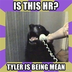 Yes, this is dog! - is this HR? Tyler is being mean
