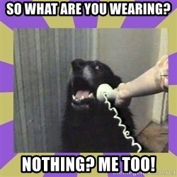 Yes, this is dog! - So what are you wearing? Nothing? Me too!