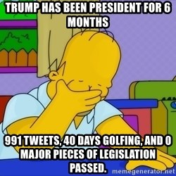 Homer Facepalm - Trump has been president for 6 monThs 991 tweets, 40 days golfing, and 0 major pieces of legislation passed.