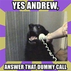 Yes, this is dog! - Yes Andrew,  answer that dummy call