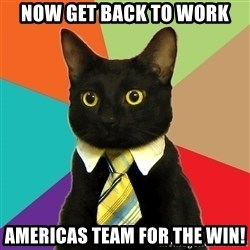 Business Cat - now get back to work americas team for the win!