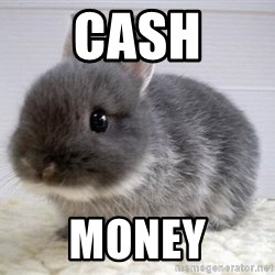 ADHD Bunny - CASH MONEY
