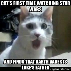 Surprised Cat - cat's first time watching star wars and finds that darth vader is luke's father