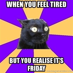 Anxiety Cat - when you feel tired but you realise it's friday