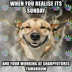 Stoner Dog - when you realise its sunday and your working at sharpfutures tomorrow
