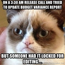 Angry Cat Meme - ON a 3:30 am release call and tried to update budget variance report but someone had it locked for editing....