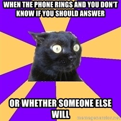 Anxiety Cat - When the phone rings and you don't know if you should answer or whether someone else will