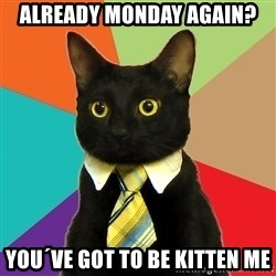 Business Cat - already monday again? you´ve got to be kitten me
