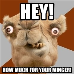 Crazy Camel lol - Hey! How much for your Minger!