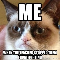 Angry Cat Meme - me when the teacher STOPPED them from fighting