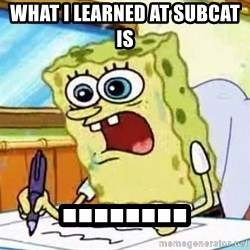 Spongebob What I Learned In Boating School Is - What i learned at subcat is  ........