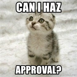 Can haz cat - can i haz approval?