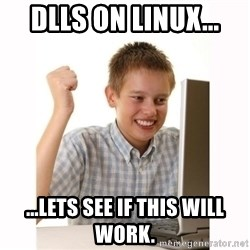 Computer kid - DLLs on linux... ...lets see if this will work.
