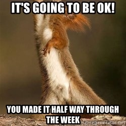 dramatic squirrel - It's Going to Be oK! You Made it Half way through the week