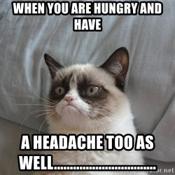 Grumpy cat good - When you are hungry and have a headache too as well................................