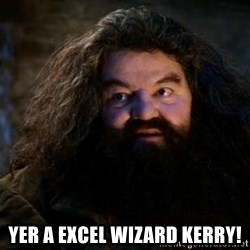 Yer A Wizard Harry Hagrid -  YER A EXCEL WIZARD KERRY!
