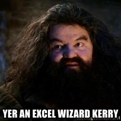 Yer A Wizard Harry Hagrid -  YER AN EXCEL WIZARD KERRY