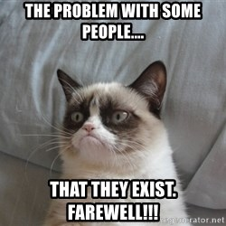 Grumpy cat good - The problem with some people.... That they Exist. Farewell!!!