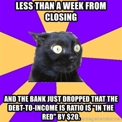 """Anxiety Cat - Less than a week from closing and the bank just dropped that the debt-to-income is ratio is """"in the red"""" by $20."""