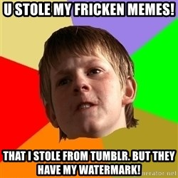 Angry School Boy - U stOle my friCken memeS! That i stOle from tumblr. But they have my watermark!