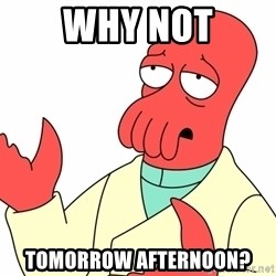 Why not zoidberg? - Why not Tomorrow afternoon?