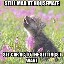 Baby Insanity Wolf - Still Mad At housemate Set Car AC To THE Settings I want