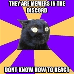 Anxiety Cat - THEY ARE MEMERS IN THE DISCORD DONT KNOW HOW TO REACT