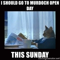i should buy a boat cat - I should go to Murdoch open day  this sunday