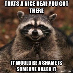 evil raccoon - THATS A NICE DEAL YOU GOT THERE IT WOULD BE A SHAME IS SOMEONE KILLED IT