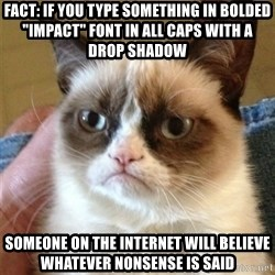 """Grumpy Cat  - Fact: If you type something in bolded """"impact"""" font in all caps with a drop shadow SOMEONE ON THE INTERNET WILL BELIEVE WHATEVER NONSENSE IS SAID"""