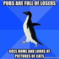 Socially Awkward Penguin - PUBS ARE FULL OF LOSERS Goes home and looks at pictures of cats