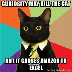 Business Cat - Curiosity May kill the cat but it causes amazon to EXCEL