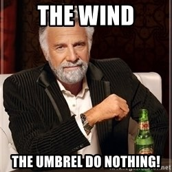 The Most Interesting Man In The World - The wind The umbrel do nothing!