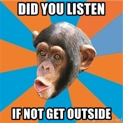 Stupid Monkey - did you listen if not get outside