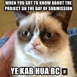 Grumpy Cat  - When you grt to know about the project on the day of suBmission  Ye kab hua bc 😐